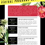 Teen Survival Kit May Virtual Programs